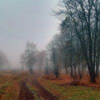 Дорога в туман :: Карпухин Сергей