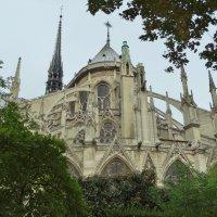 Собор Парижской Богоматери :: Svetlana27
