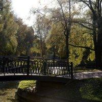 в Юсуповском саду :: ник. петрович земцов