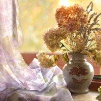 сухие цветы :: Dorosia
