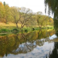 На берегах речки Хомора :: Леонид Корейба