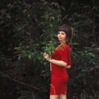 Девушка в красном :: Алиса Терновая