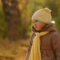 Осенняя алея :: Вера Арасланова