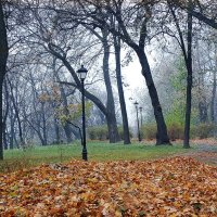Сиреневый  туман Фото №3 :: Владимир Бровко