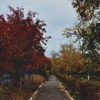 Осень :: Анастасия Крупкина