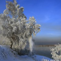 Зима :: Алексей Белик