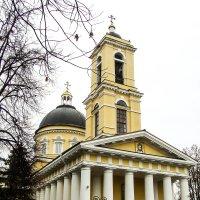 Петропавловский собор в Гомеле :: Николай Косенок