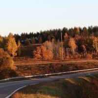 Осень :: Сергей Бабаков