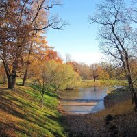 Осенний пейзаж :: dli1953