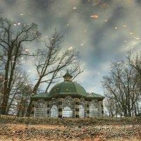 Осеннее отражение :: Сергей Григорьев