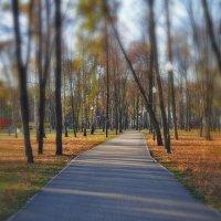 Дорога в осень :: Татьяна Кретова