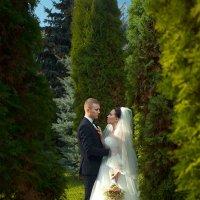 Свадебное фото :: Георгий Трушкин