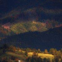 Світло тінь :: Андрій Кізима