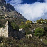 Башни Ингушетии. :: Ахмат Б.