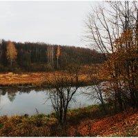 осень :: AllaSaa