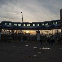 Наземное метро(Тимерязевская) :: Владимир Питерский