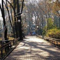 В городском парке :: Владимир Бровко