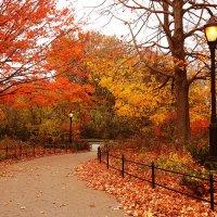 Дорожка в осень :: Galina Kazakova