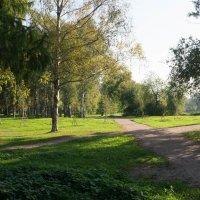 Парк :: Владислав Крылов