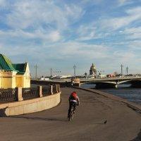 Пора на прогулку! :: Вера Моисеева