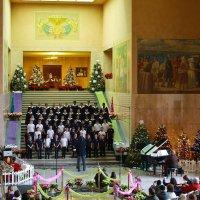Новогоднее исполнение :: Victoria Ditkovsky