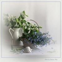 Весны мгновение... :: Татьяна Ким