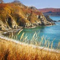 Осень в Приморье :: Наталья