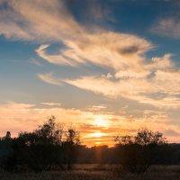 Закат над лугом :: Андрий Майковский