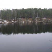 Озеро в лесу :: Анатолий