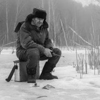 На льду :: Сергей Михайлов