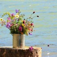 Полевые цветы и бирюзовая река :: Наталья Казанцева