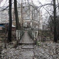 Мост :: Elena Sorokina