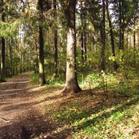 Осень-2012 - Img_6505 :: Андрей Лукьянов
