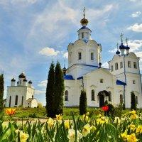 Церковь во имя Успения Пресвятой Богородицы. Орел :: Никита Борисов