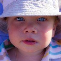 эти глаза напротив.. :: Катерина Орлова