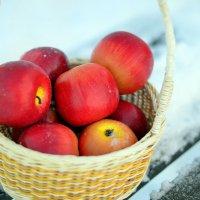 яблоки зимой :: Юлия