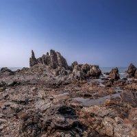 Индия.Север Гоа... :: Александр Вивчарик
