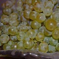 Виноград :: Elena TM
