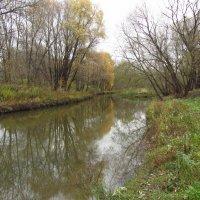 Осень-2014 - Img_7719 :: Андрей Лукьянов