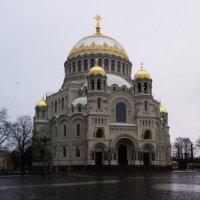 На площади у вечного огня. Санкт-Петербург :: Ксения -