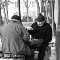 Партия в шахматы :: владимир Костенко
