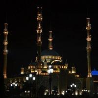 """Грозный.Мечеть """"Сердце Чечни"""". :: Светлана Винокурова"""