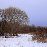 с первым снегом :: Владимир Артюхов