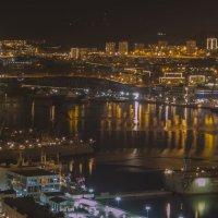 Огни большого города :: Нина Борисова