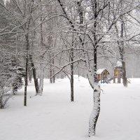 У леса на опушке жила зима в избушке :: Татьяна Ломтева