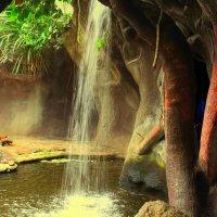в пражском зоопарке :: Ольга