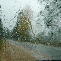Вот и осень..., и дождь в окно стучится... :: Анатолий Петров