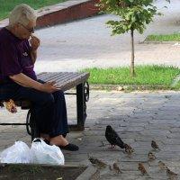 Птицы...  мы все птицы... :: Валерия  Полещикова