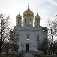 Екатерининский собор :: Елена Павлова (Смолова)