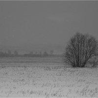 Зимний пейзаж :: Сергей Винтовкин